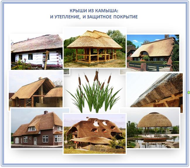 Экологические крыши из камыша