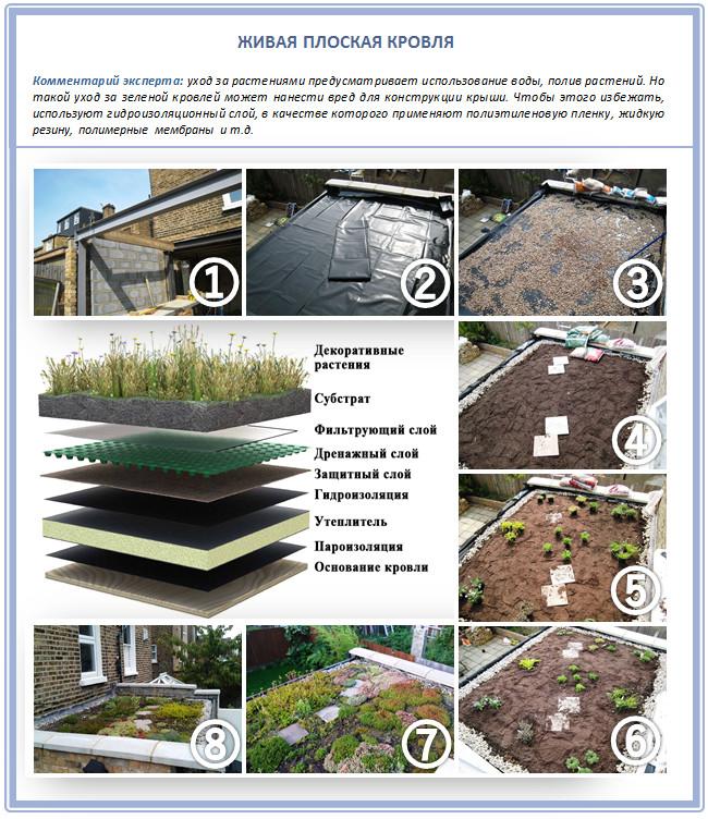 Устройство зеленой плоской крыши