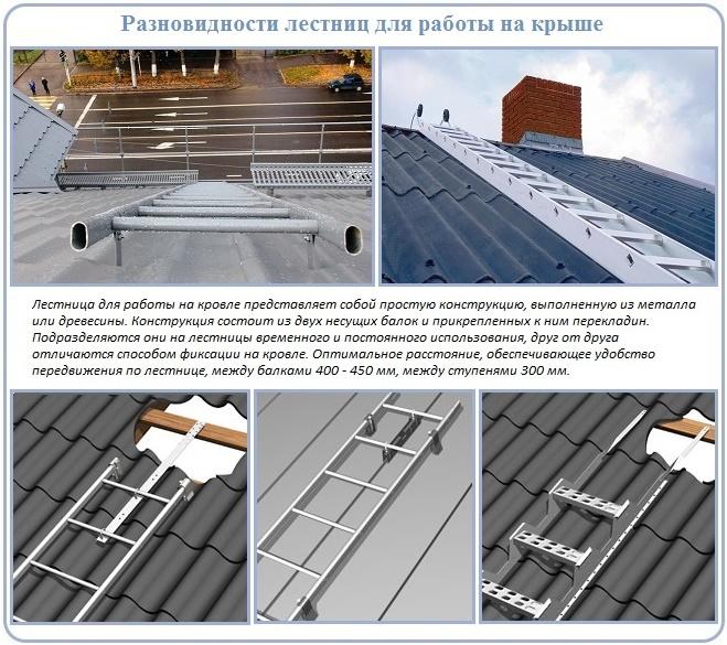 Разновидности лестниц для работы на крыше