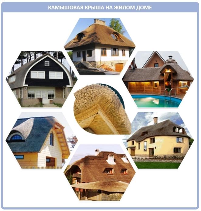 Как выглядит камышовая крыша на современном доме