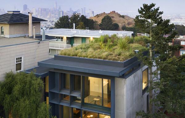 Зеленая крыша дома в Сан-Франциско