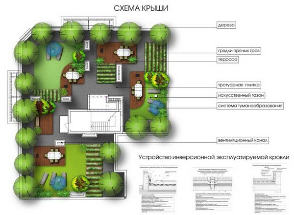 Проект озеленения террасы