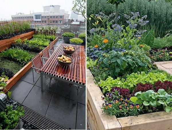 Небольшие огороды на террасе
