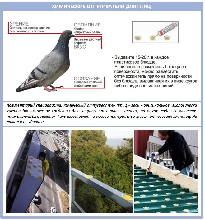 Оптический гель для отпугивания птиц