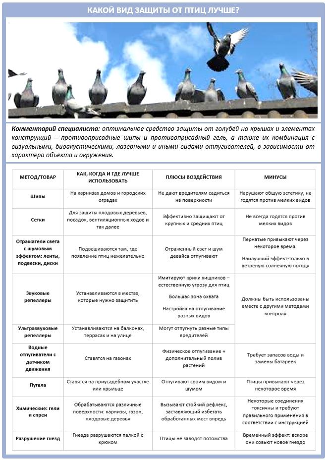 Все способы и методы защиты крыши от птиц