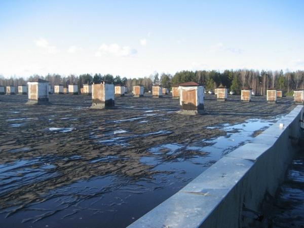 Последствия застаивания воды на крыше