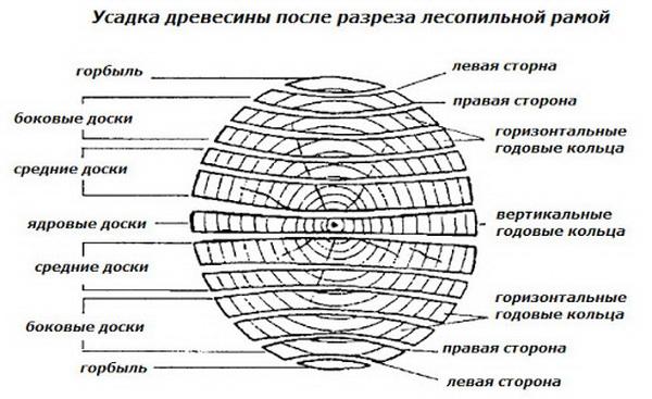 Как усаживается древесина при распиле