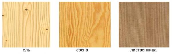 Разница между древесиной ели, сосны, лиственницы