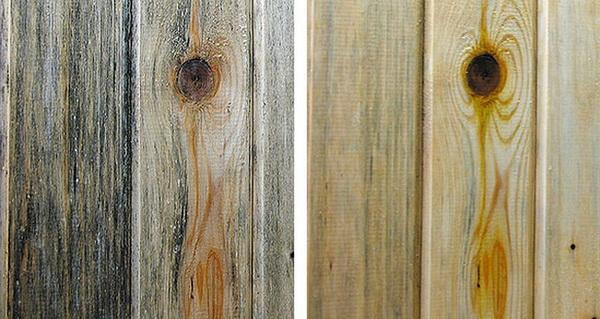 Выбеленный лес до и после