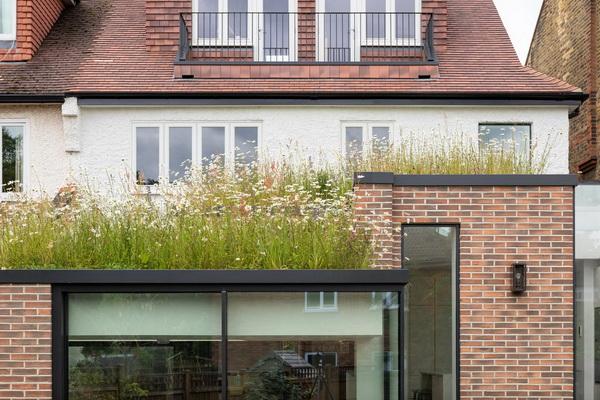 Зеленая крыша на пристройке